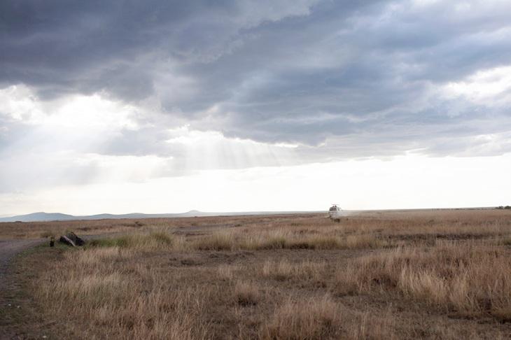 twilight in the kenyan bush